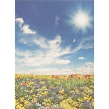 94315-2-3-2 Панно AS Creation Цветочная поляна 2,8*2,0