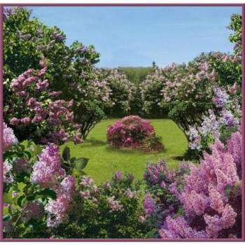 Весенний сад/6листов/196*201